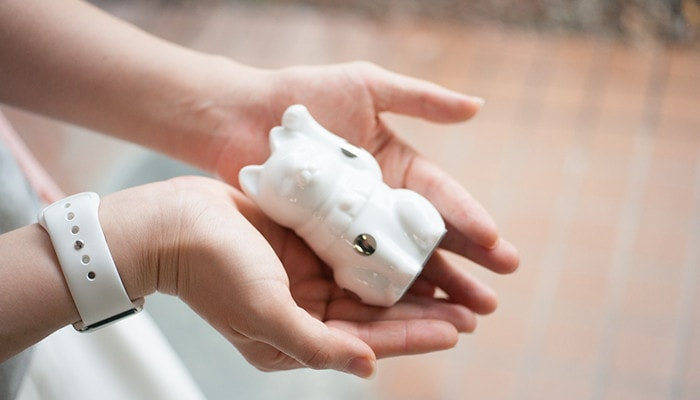 A woman has white Fortune cat