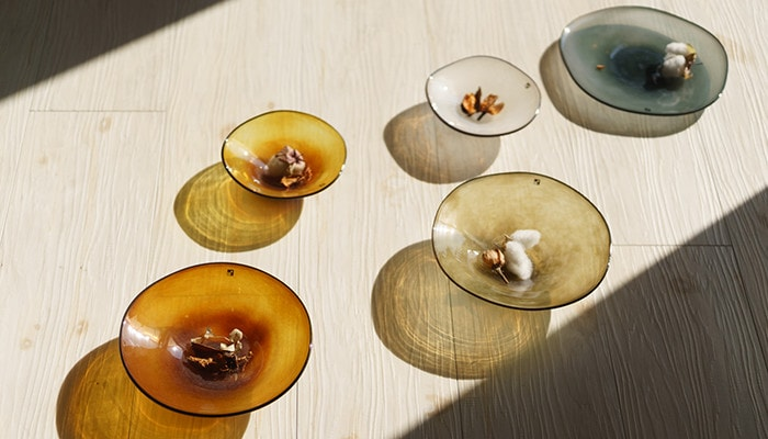 Light throws colorful shadows through glass dishes kasumi