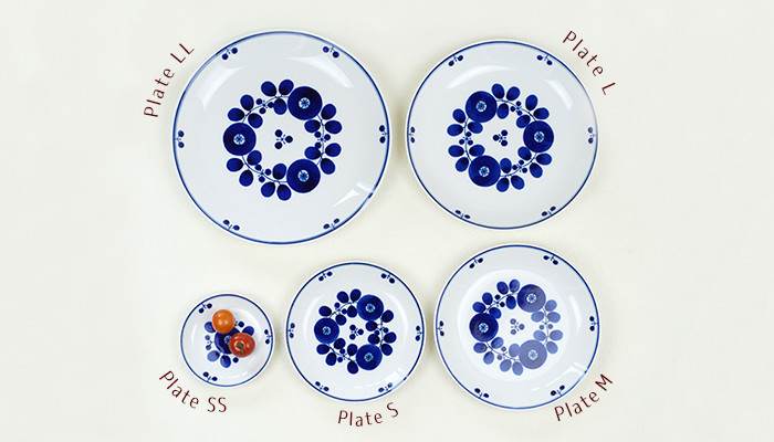 Comparing the sizes of Plate series of Bloom series