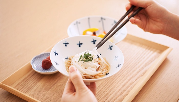 Noodles on the Japanese rice bowls of Hakusan Toki