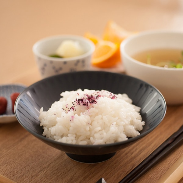 Modern design of navy Japanese rice bowl