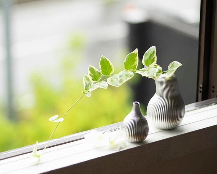 Bud vases fig and pear on a window sill