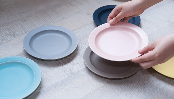 A woman has pink plate of colorful dinnerware DAYS