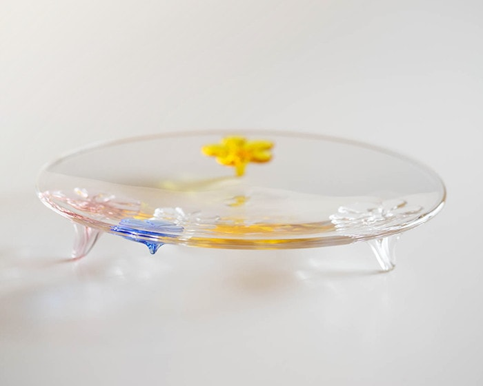 Look camellia plate from Sghr from its side