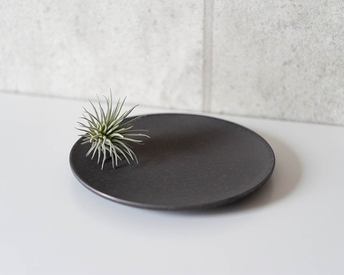 Plants on the stoneware plate S