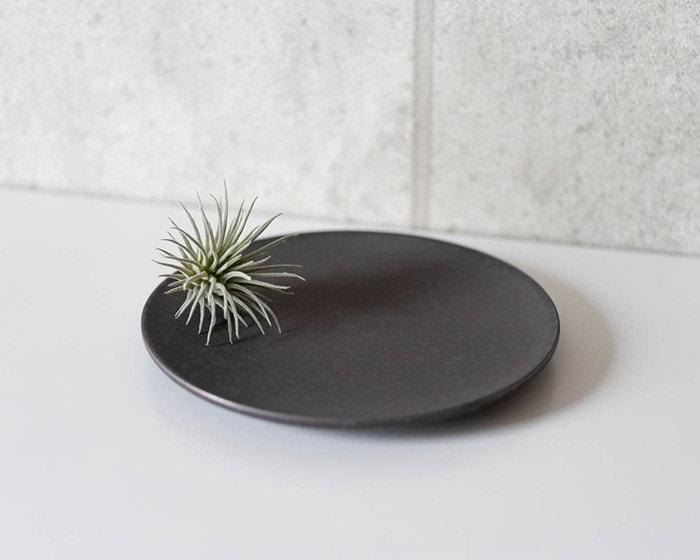 SyuRoの炻器プレートSに植物を飾っている