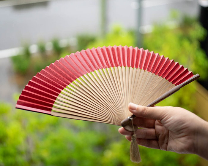A woman has red Japanese fan