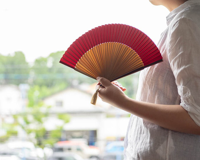 A woman is fanning hand fan from WDH