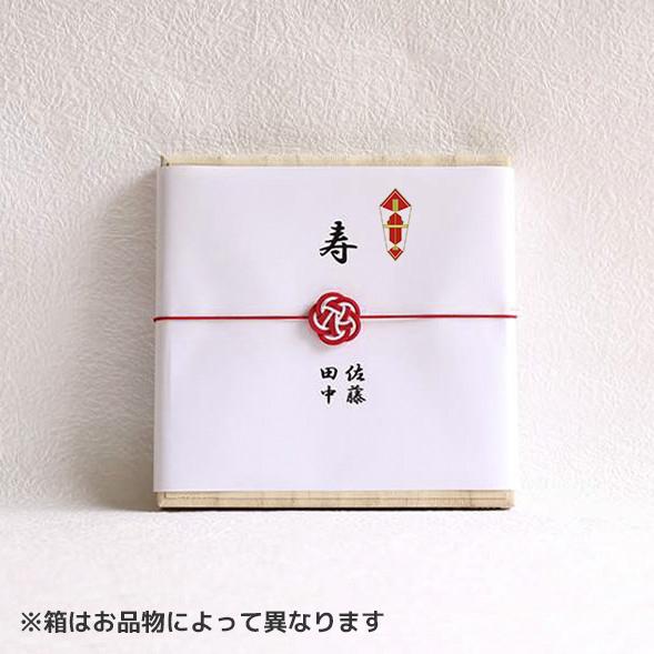 のしと梅水引(包装紙なし)のイメージサンプル