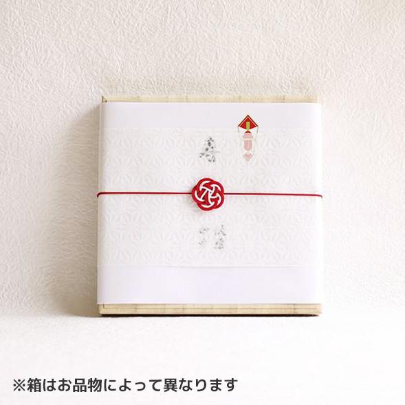 のしと和紙掛紙と梅水引(包装紙なし)のイメージサンプル