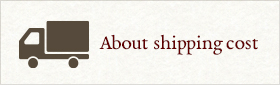 About shipping cost