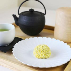 Japanese tea shop set at home