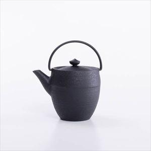 Cast iron teapot / Marudutsu S / Chusin Kobo