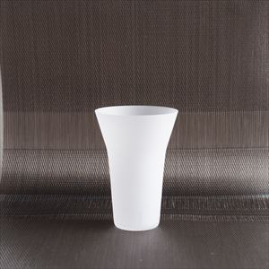 ETERNAL GLASS/Tumbler/Frost/WIRED BEANS_Image_1