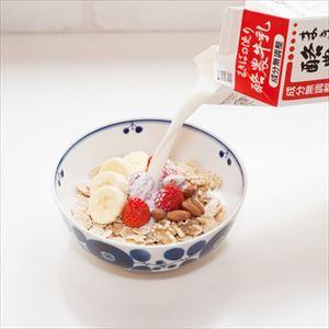 Bowl M / Bloom series / Wreath / Hakusan Toki_Image_2
