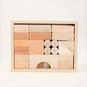Wood blocks in a box (English) / Oak Village