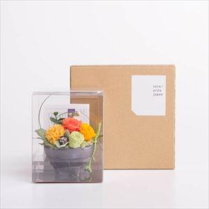 【セット】お花とパレスプレート オレンジ 化粧箱入/フラワーギフト_Image_3