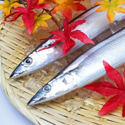 さんまを食べよう♪焼き魚にピッタリのプレート!