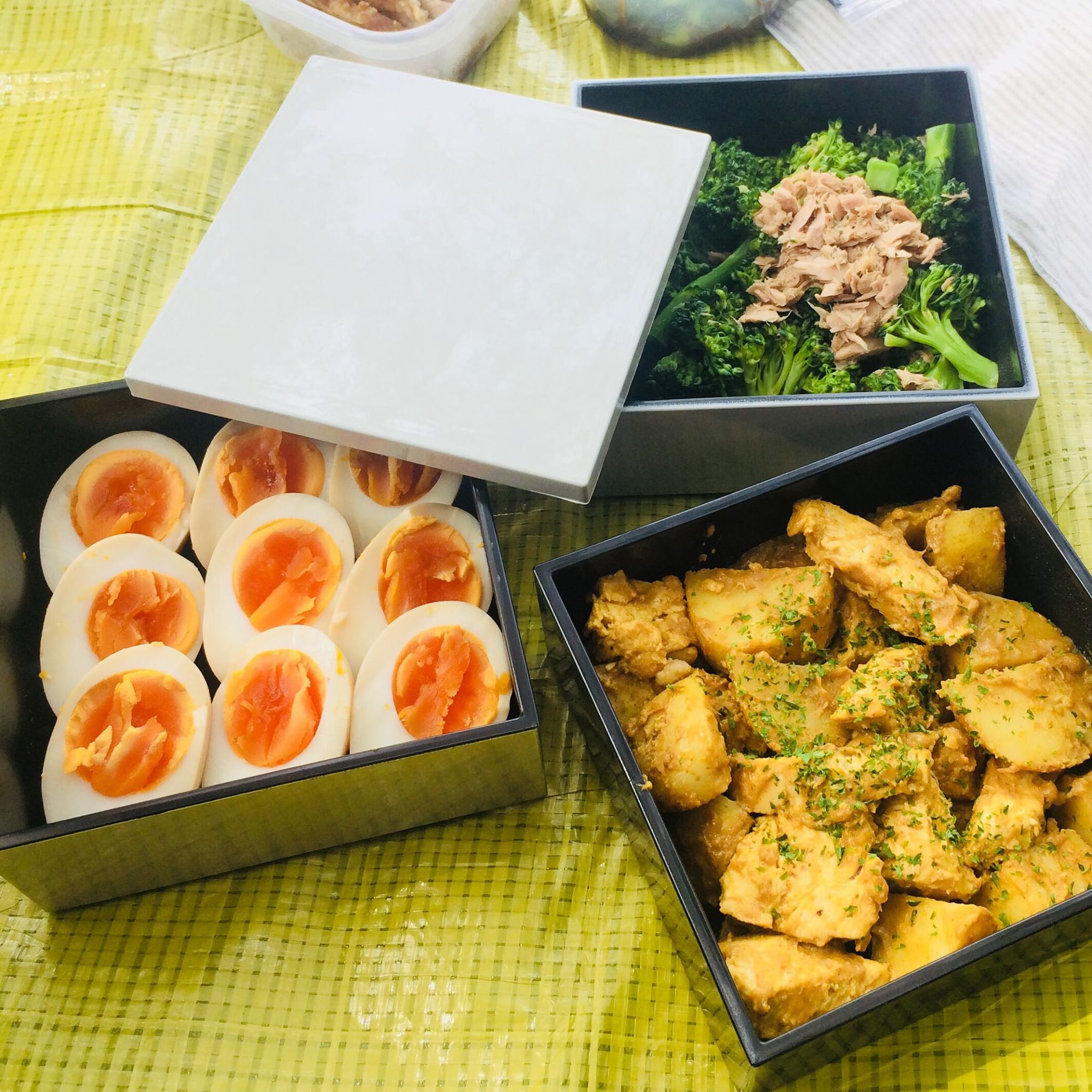 Go on Hanami with lunch box in jubako!